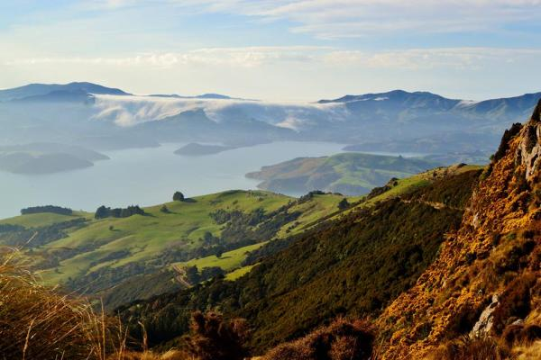 Near Akaroa, New Zealand.